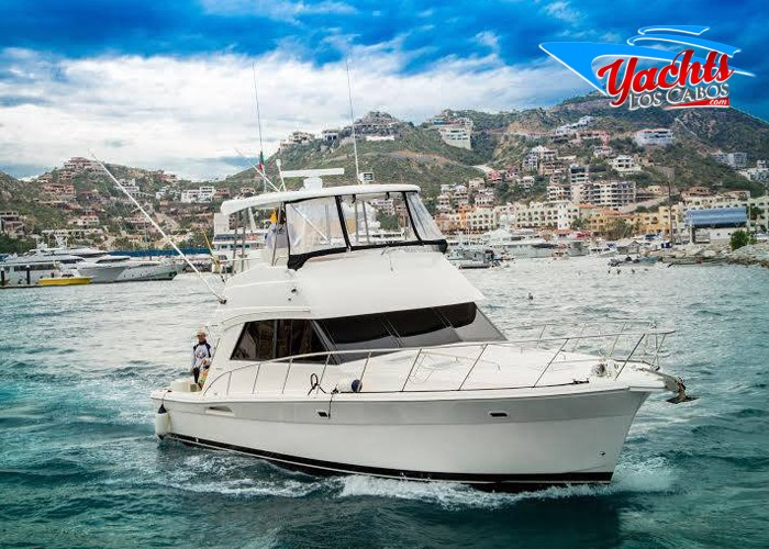 47' Riviera Luxury Fishing Yacht los cabos, cabo san lucas